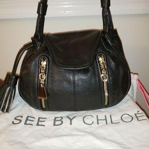 SEE by Chloe. Incredible shoulder/crossbody bag